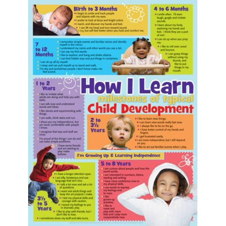 Learning Zone Poster - How I Learn Poster Laminated Poster - 18x24