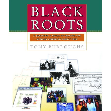 Black Roots : A Beginners Guide To Tracing The African American Family