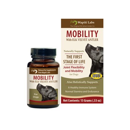 Wapiti Labs Elk Antler Dog Mobility Powder,15g