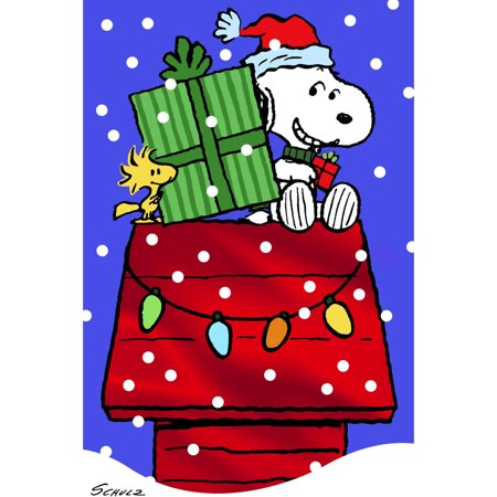 dayspring fun boxed christmas cards peanuts snoopy house 24pk - Snoopy House Christmas