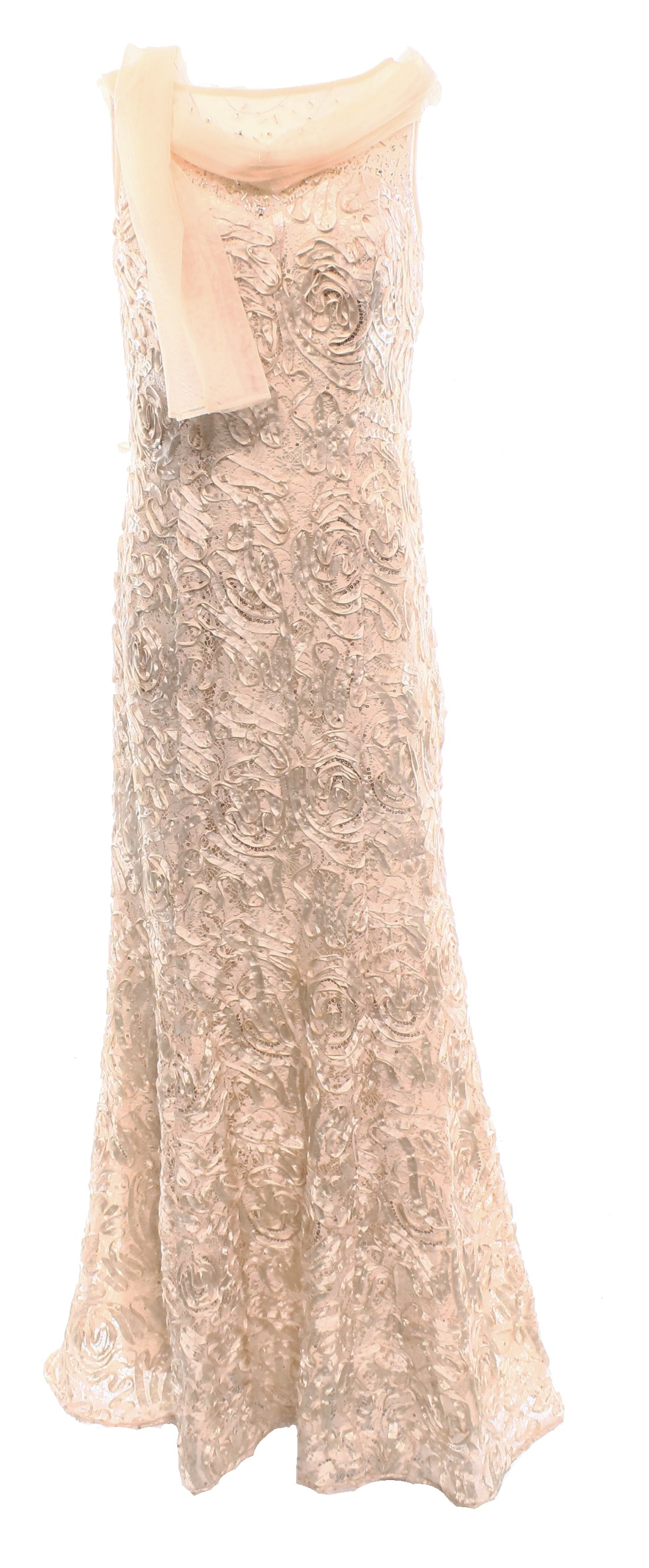 Ignite Evenings by Carol Lin NEW Nude Peach Women\'s 10 Soutache Gown ...