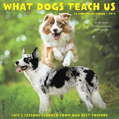 What Dogs Teach Us 2019 Wall Calendar (Other)
