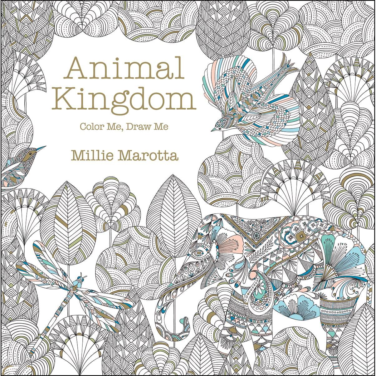 Color me draw me animal kingdom book - Color Me Draw Me Animal Kingdom Book 1