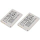 Amsahr S_DBL40_2CT Digital Replacement Battery PLUS Batte...