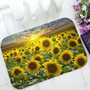 PHFZK Beautiful Sky Cloud Doormat, Nature Art Sunflower Field Landscape Doormat Outdoors/Indoor Doormat Home Floor Mats Rugs Size 23.6x15.7 inches