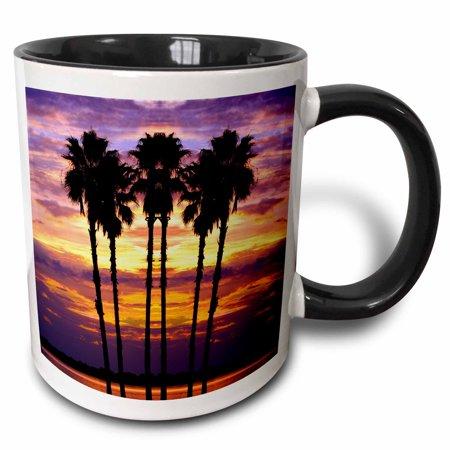 Two Tone Dora - 3dRose Florida, Mt. Dora, sunset with palm trees - US10 DSN0008 - Deborah Sandidge - Two Tone Black Mug, 11-ounce