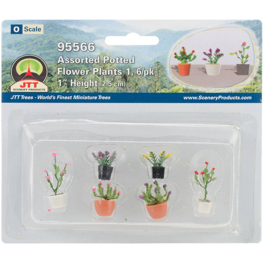 Assorted Potted Flowers, 6pk