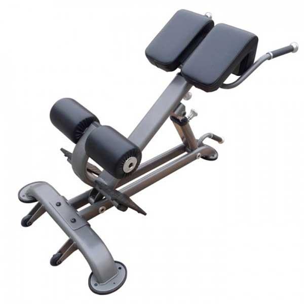 Element Fitness Hyper Extension Bench
