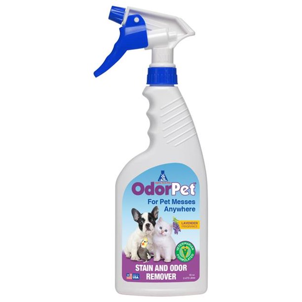 Stain & Odor Eliminator, Enzyme Cleaner