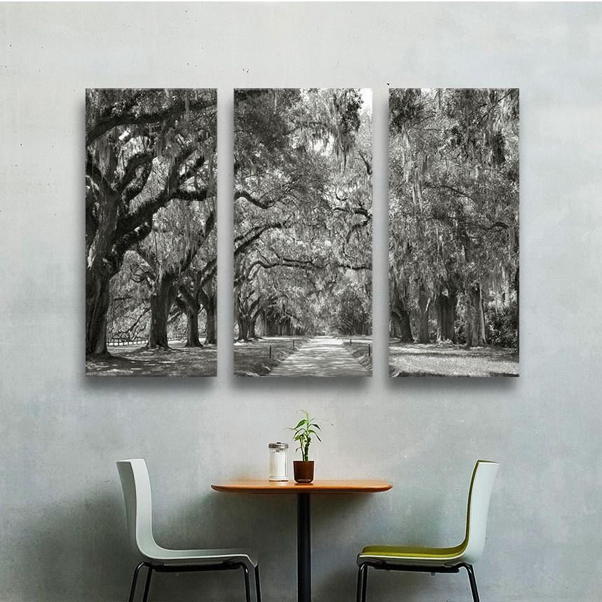 "ArtWall Steve Ainsworth ""Live Oak Avenue"" 3 Piece Gallery-Wrapped Canvas Set"