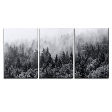 wall26 - 3 Piece Canvas Wall Art - Misty Forests of Evergreen Coniferous Trees in an Ethereal Landscape - Modern Home Decor Stretched and Framed Ready to Hang - 16