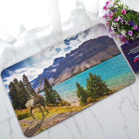 Phfzk Beautiful Blue Sky Cloud Doormat  Deer On The Bank Of Azure Lake Rocky Mountain Doormat Outdoors Indoor Doormat Home Floor Mats Rugs Size 30X18 Inches
