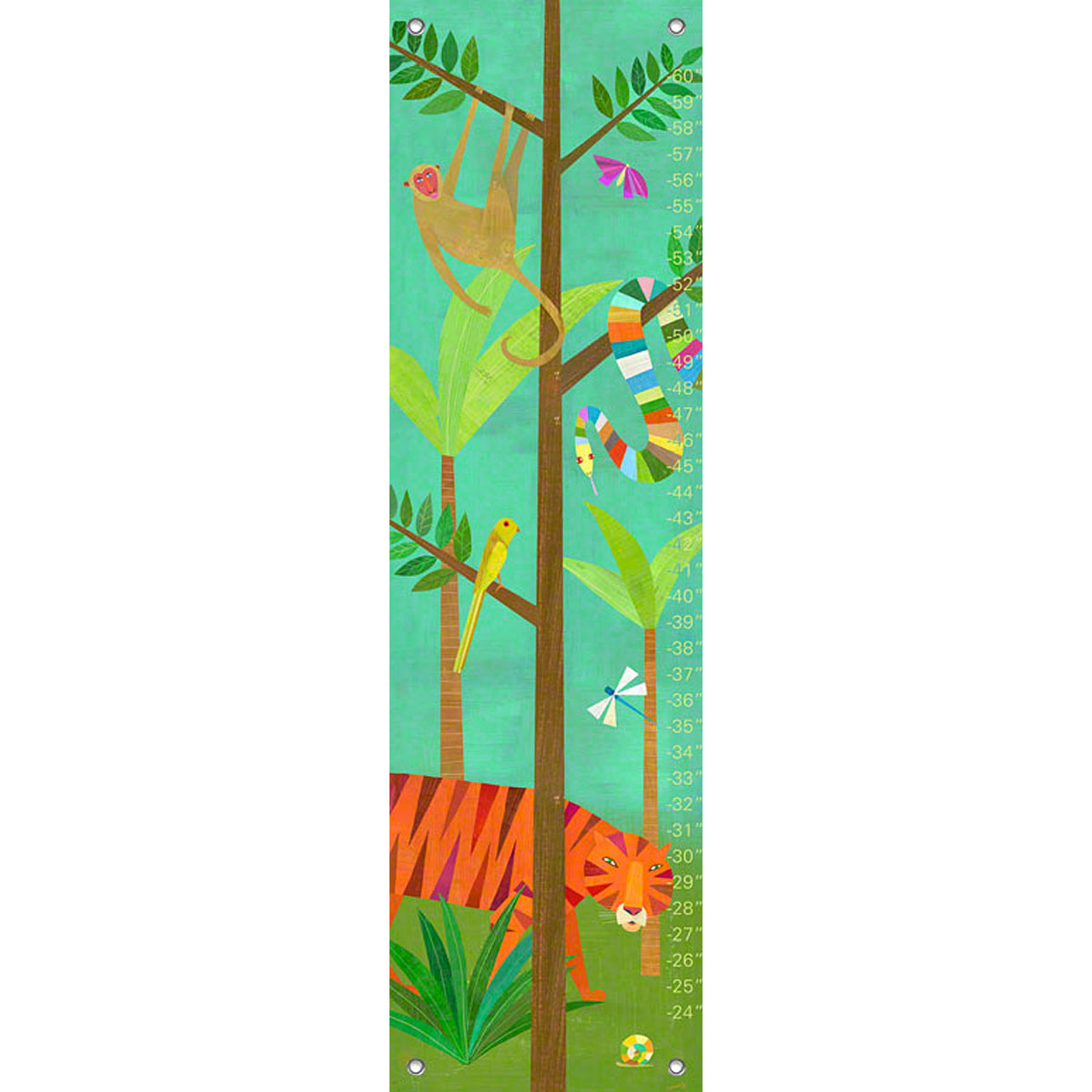 12 by 42-Inch PE2832 Oopsy Daisy Can Do Kids by Maria Carluccio Growth Charts