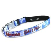 Strapworks PLPID-1-XXL 1 W inch Premier Line Pet ID Adjustable Dog Collar - XXL
