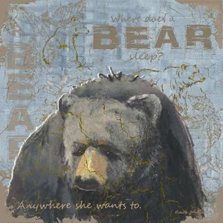 Where Does a Bear Sleep Poster Print by Anita Phillips ()