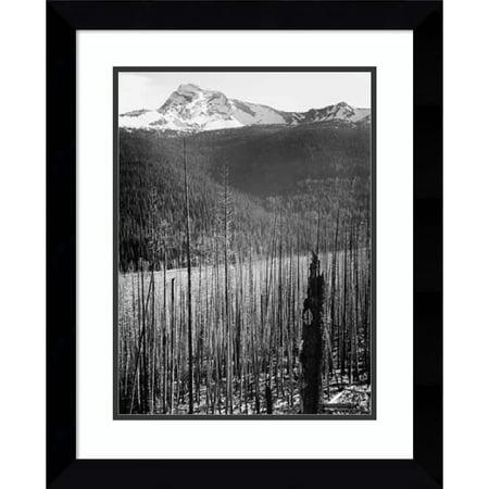 Amanti Art Framed Art Print 'Burned Area, Glacier National Park, Montana - National Parks and Monuments, 1941' by Ansel Adams Black