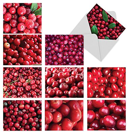 'M6023 VERY BERRY CHRISTMAS' 10 Assorted All Occasions Notecards Featuring Vibrant Close-Up Photographs Of Juicy Red Cranberries with Envelopes by The Best Card Company