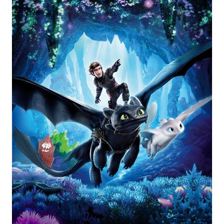 How To Train Your Dragon: The Hidden World Personalized Birthday Edible Frosting Image 1/4 sheet Cake Topper
