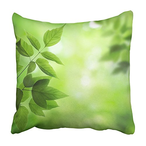 USART Leaf Fresh and Green Leaves Environment Garden Nature Herb Foliage Abstract Pillowcase Cushion Cover 16x16 inch