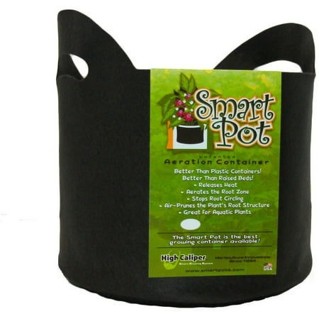 Smart Pot 20 gallon with handle 1 pack ()