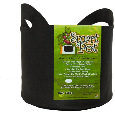 Smart Pot 10 Gallon W  Handle 1 Pack