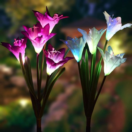 2 Pack Outdoor Solar Garden Stake Lights - Coolmade Solar Powered Lights with 8 Lily Flower, Multi-color Changing LED Solar Stake Lights for Garden, Patio, Backyard (Purple and (2 Solar Garden)