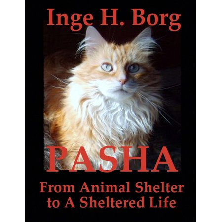 Pasha, From Animal Shelter to A Sheltered Life - eBook