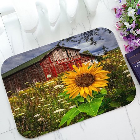 GCKG Barn Meadow Flowers Non-Slip Doormat Indoor/Outdoor/Bathroom Doormat 23.6 x 15.7 (Meadow Mat)