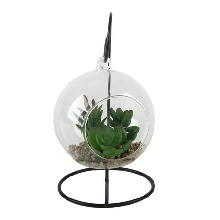 Art Glass Hanging (Hanging Glass Succulent with)