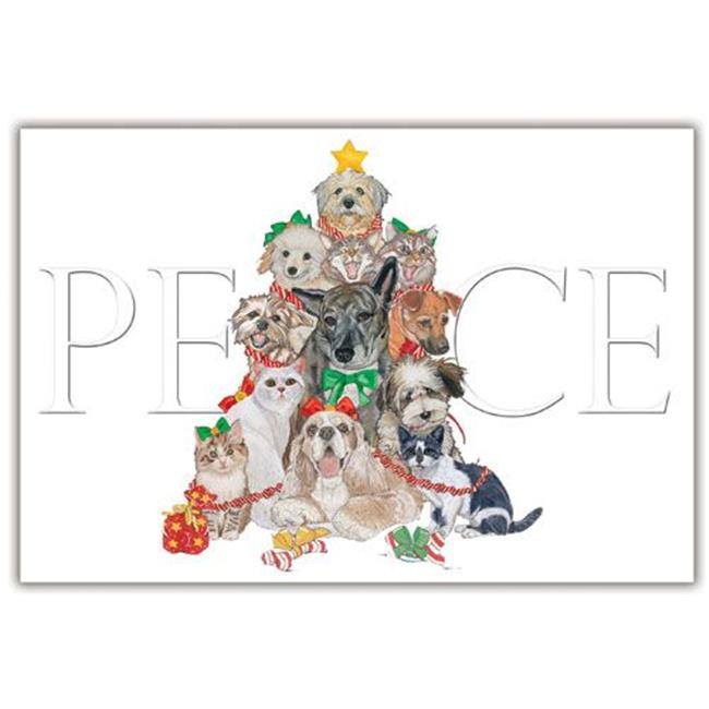 Pipsqueak Productions C870 Mix Dog With Cat Holiday Boxed Cards
