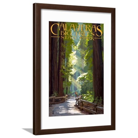 Calaveras Big Trees State Park - Pathway in Trees California Redwood Vintage Travel Advertisement Framed Print Wall Art By Lantern Press