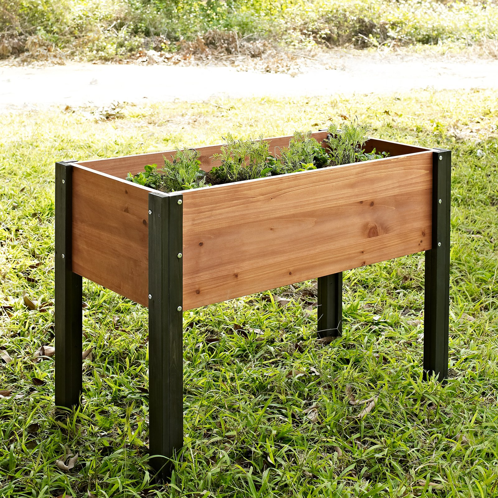 Coral Coast Bloomfield Wood Raised Garden Bed - 40L x 20D x 29H in.