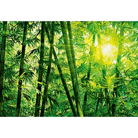 Ideal Décor Bamboo Forest Wall Mural - Bamboo Wall Murals