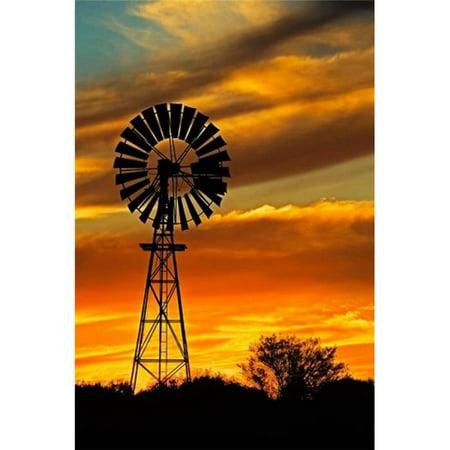 Australian Tack (Posterazzi PDDAU01DWA2444 Windmill Oodnadatta Track Outback Australia Poster Print by David Wall - 18 x 26 in. )