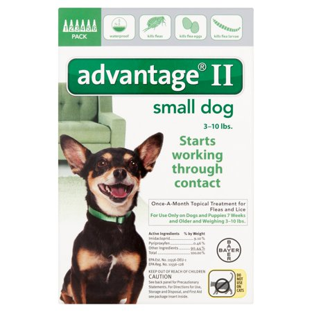 Bayer Advantage Ii Once A Month Topical Treatment For Fleas And Lice Small Dog 3 10 Lbs  6 Pack