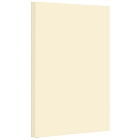 Color Cardstock Paper 67 Vellum Bristol, Sizes: 8.5 x 11 | 11 x 17 | 8.5 x 14 |1 ream of 250 Sheets Per Pack. (11 x 17