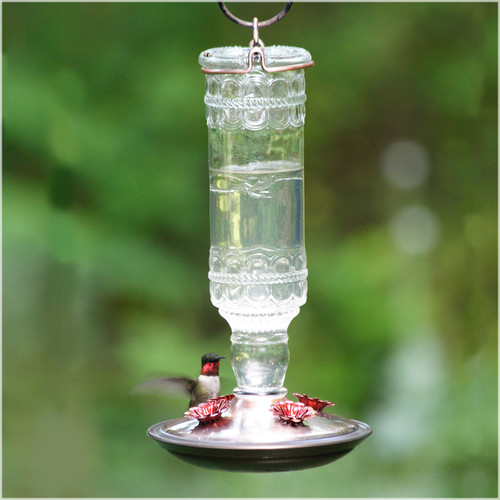 Perky-Pet Clear Antique Bottle Glass HummingBirdfeeder by WOODSTREAM CORPORATION