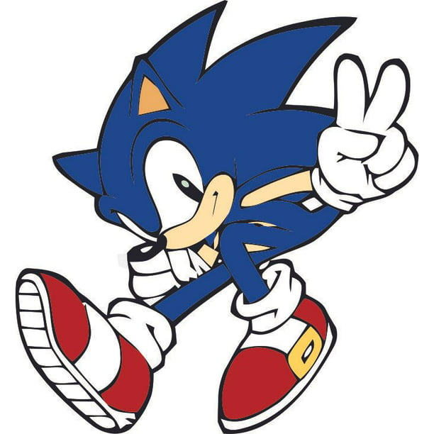 Sonic The Hedgehog Show Cartoon Classic Video Game Movie Character