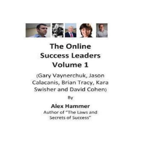 The Online Success Leaders Volume 1   Gary Vaynerchuk  Jason Calacanis  Brian Tracy  Kara Swisher And David Cohen
