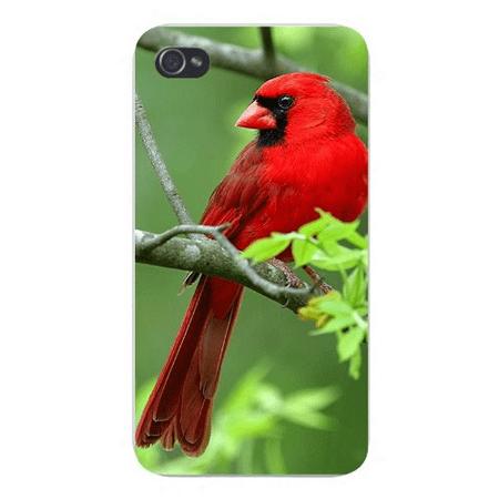 apple iphone custom case 4 4s plastic snap on cute red robin bird