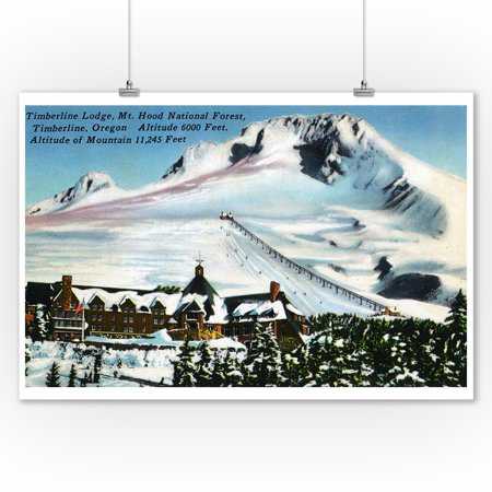 Mount Hood, Oregon - View of Timberline Lodge, Mt Hood in Winter (9x12 Art Print, Wall Decor Travel Poster) (Mount Hood Timberline)