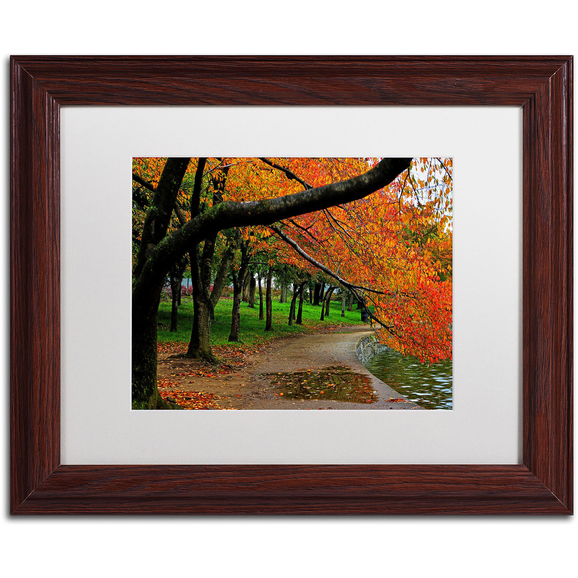 "Trademark Fine Art ""Tidal Basin Autumn 2"" Canvas Art by CATeyes, White Matte, Wood Frame"