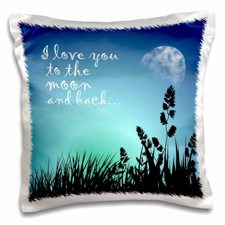 3dRose Beautiful Blue Night Scene- I Love You to The Moon and Back, Pillow Case, 16 by 16-inch ()