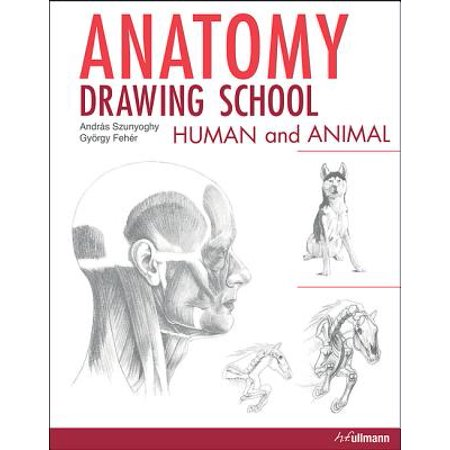 Anatomy Drawing School : Human and - Animal School