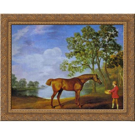 Pumpkin with a Stable Lad 24x20 Gold Ornate Wood Framed Canvas Art by George Stubbs ()