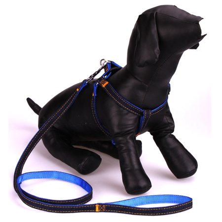 Stylish Denim & Blue Nylon Pet Leash & Adjustable Harness Small Dog Puppy Cat