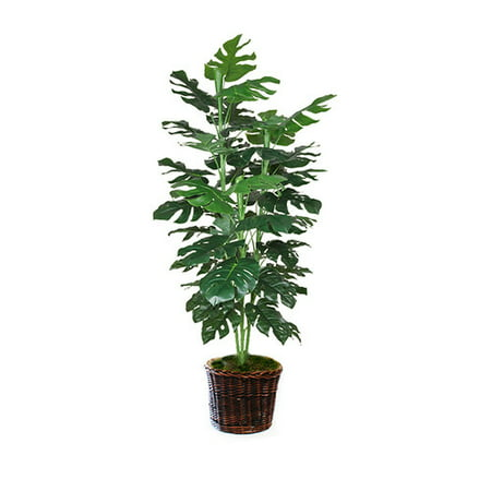 Dalmarko Designs Philodendron Tree Floor Plant In Planter Walmart Com