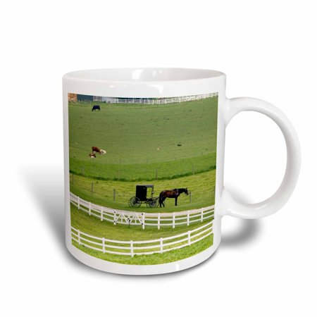 3dRose Amish farm with horse buggy near Berlin, Ohio - US36 DFR0008 - David R. Frazier, Ceramic Mug, 11-ounce