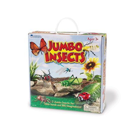Learning Resources Jumbo Insects, Fly, Ant, Bee, Ladybug, Grasshopper, Butterfly, and Dragonfly, 7 Insects