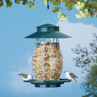 Green Hanging Outdoor Squirrel Proof Bird Feeder with Round Perch
